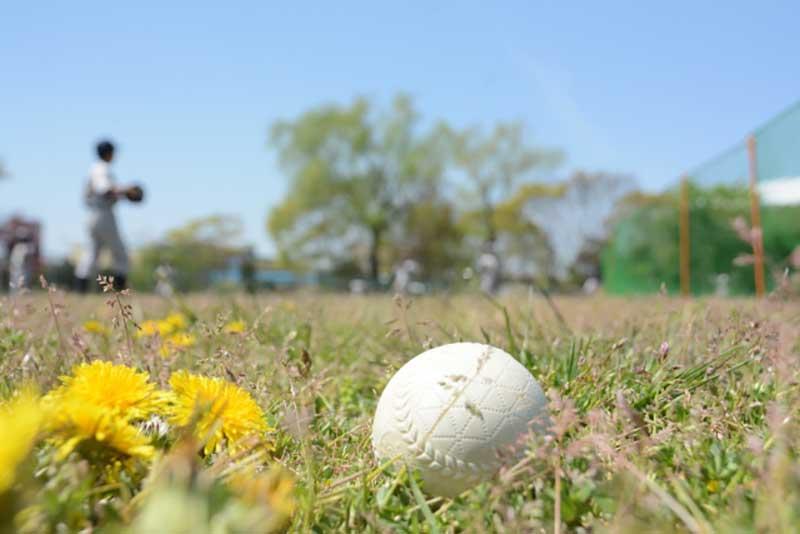 草野球のグラウンドとボール