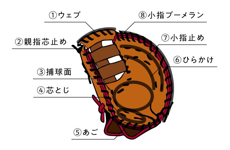 ファーストのミットの各名称を説明したイラスト