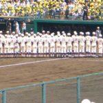 草野球の公式戦や大会の基礎知識