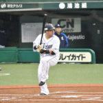 山川穂高選手のバッティングフォーム